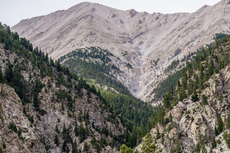 Mt普林斯顿科罗拉多落矶山脉 免版税库存照片