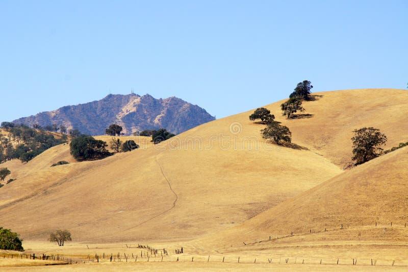Mt蝙蝠鱼,沃尔纳特Creek,加州另一个看法  库存照片