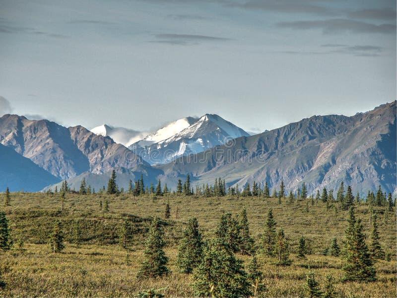 Mt麦金莱阿拉斯加 库存图片