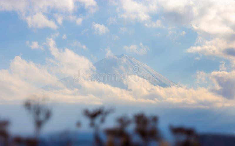 Mt Фудзи и озеро Kawaguchi на Yamanashi, Японии стоковые изображения