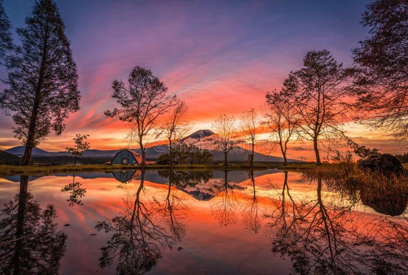 Mt 与大树和湖的富士日出的在富士宫,日本 免版税库存图片
