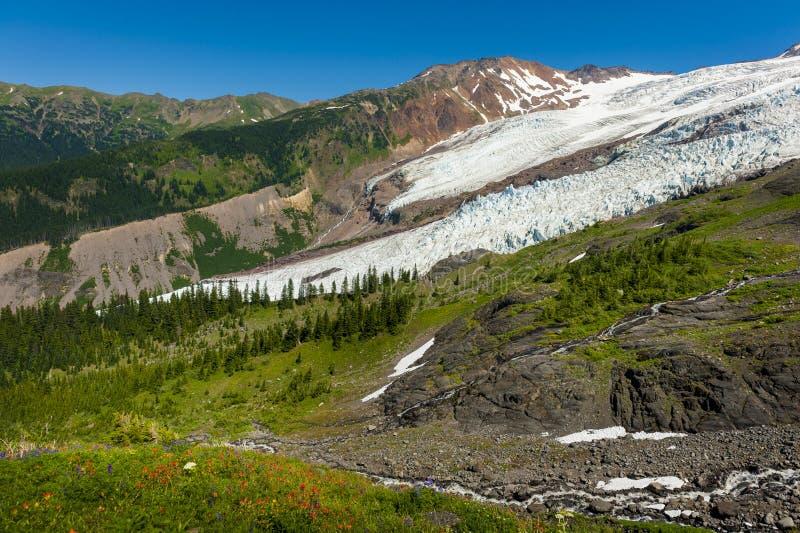 Mt 贝克和科尔曼冰川 库存图片