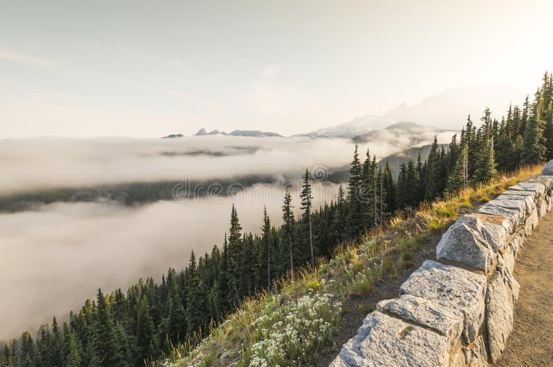 Mt更加多雨的国家公园,华盛顿,美国 免版税库存图片