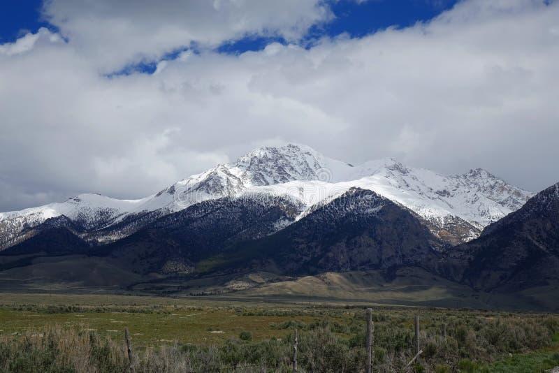 Mt 博拉-爱达荷 免版税库存照片