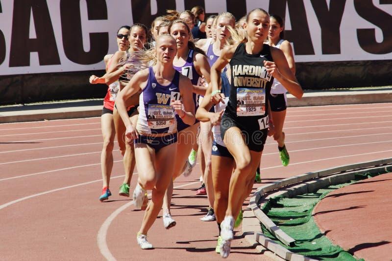 Mt 囊传递2015田径比赛,妇女的800米 前在历史的Hilmer小屋体育场将举行 免版税库存图片