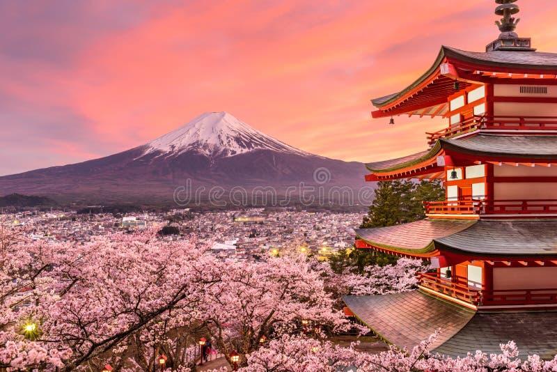 Mt 富士和塔在春天 库存图片