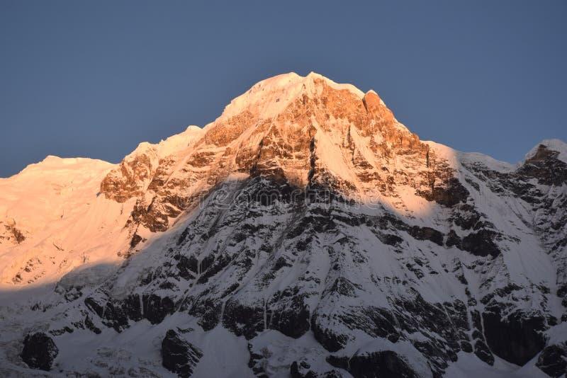 Mt Annapurna - Sonnenaufgang lizenzfreie stockfotografie