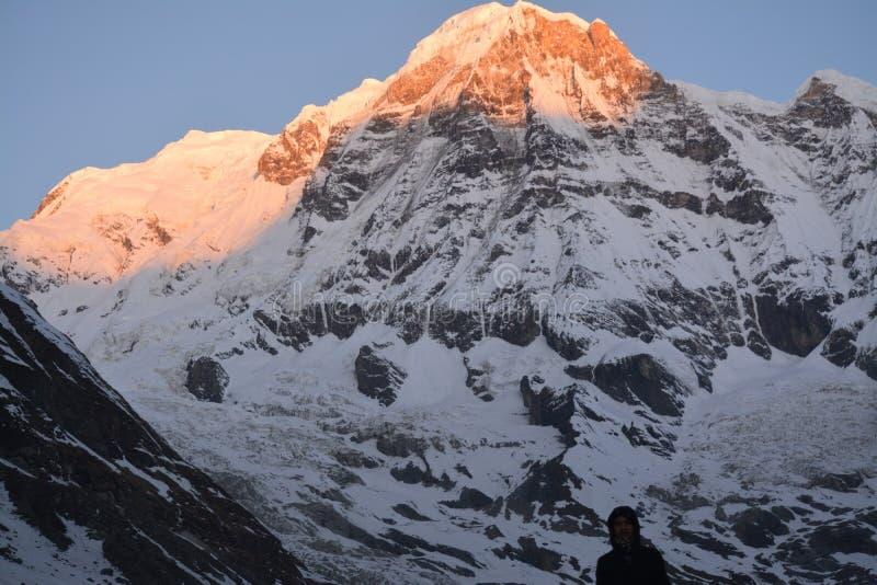 Mt Annapurna - Sonnenaufgang lizenzfreies stockbild