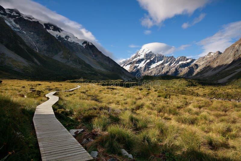 Mt Aoraki (Mt 厨师),新西兰 免版税库存照片