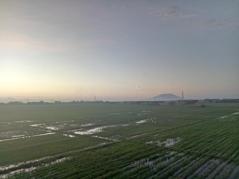 Mt Arayat sikt arkivfoto