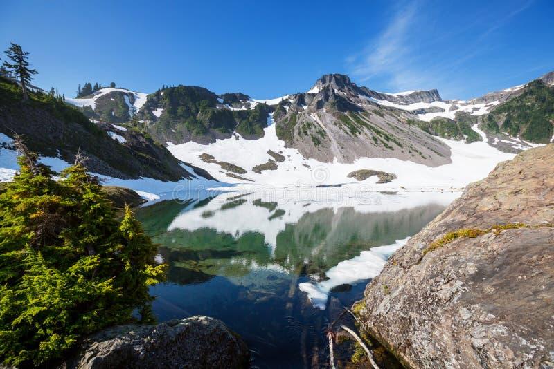 Mt Baker Area. Mt. Baker recreation area, Washington, USA royalty free stock photo