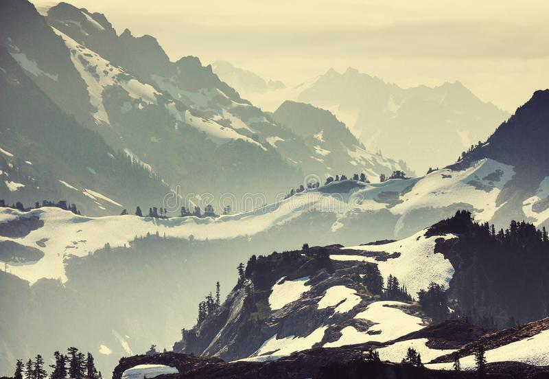 Mt Baker Area. Mt. Baker recreation area, Washington, USA royalty free stock images