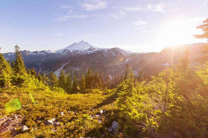 Mt.Baker Area stock images