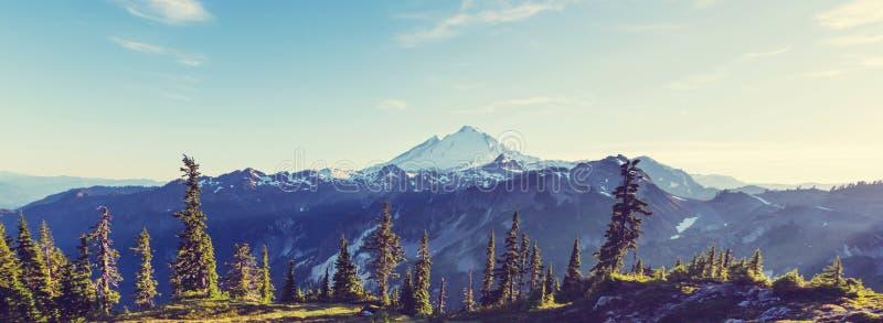Mt.Baker Area. Mt. Baker recreation area, Washington, USA royalty free stock photography