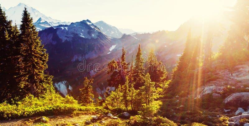 Mt.Baker Area. Mt. Baker recreation area, Washington, USA stock photos
