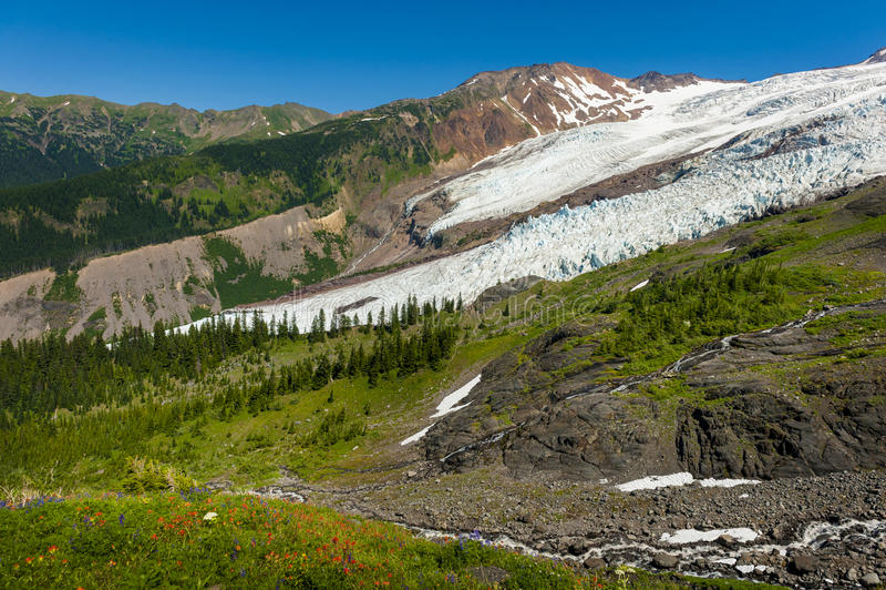 Mt Baker et Coleman Glacier image stock