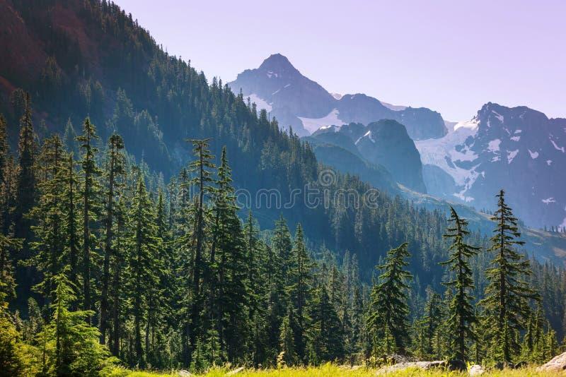 Mt.Baker Area. Mt. Baker recreation area, Washington, USA stock photography