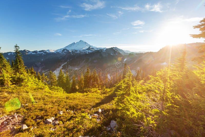 Mt Baker. Recreational area in summer season stock photography