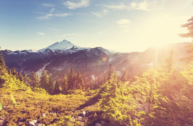 Mt Baker. Recreational area in summer season royalty free stock photo