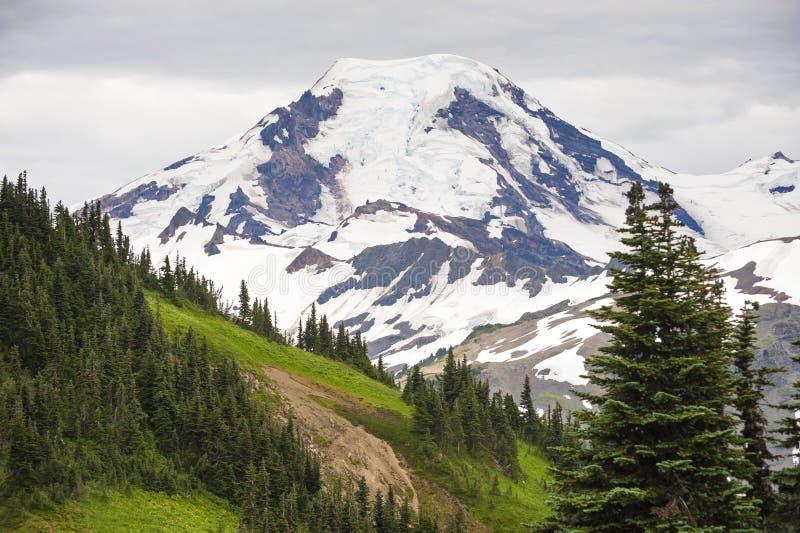Mt. Baker Washington royalty free stock image