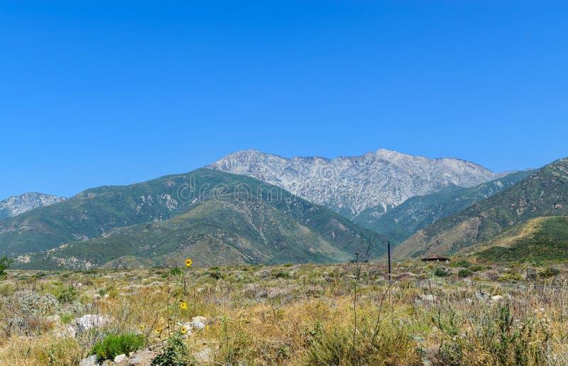 Mt Baldy Kalifornien arkivbilder