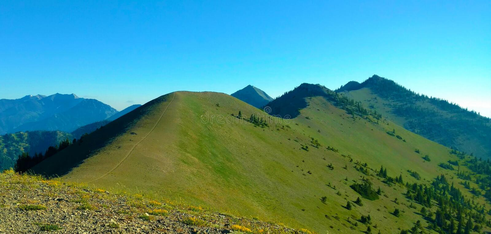 Up on the Bridger Ridge Trail royalty free stock images