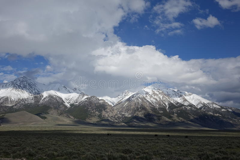 Mt Borah - Idaho royaltyfri fotografi