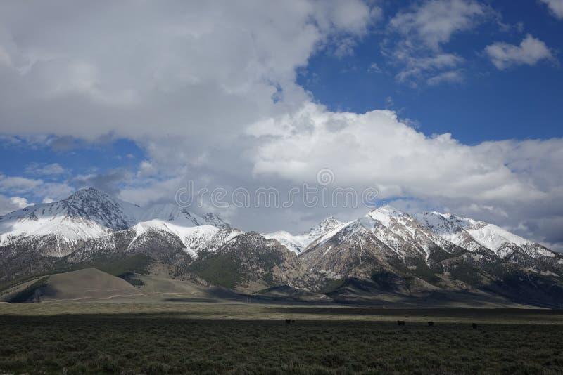 Mt Borah - Idaho arkivbild