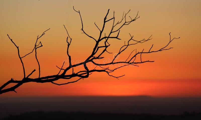 Mt. Cannibal Sunset stock photo