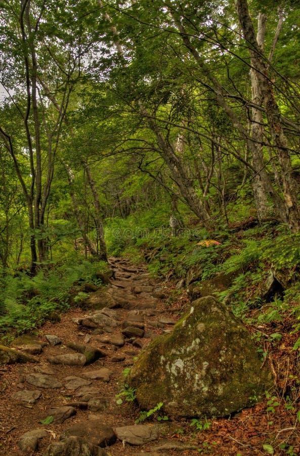 MT Eboshidake maakt deel uit Japanse Alpen in de Prefectuur van Nagano en is 2.066 meters lang royalty-vrije stock foto's