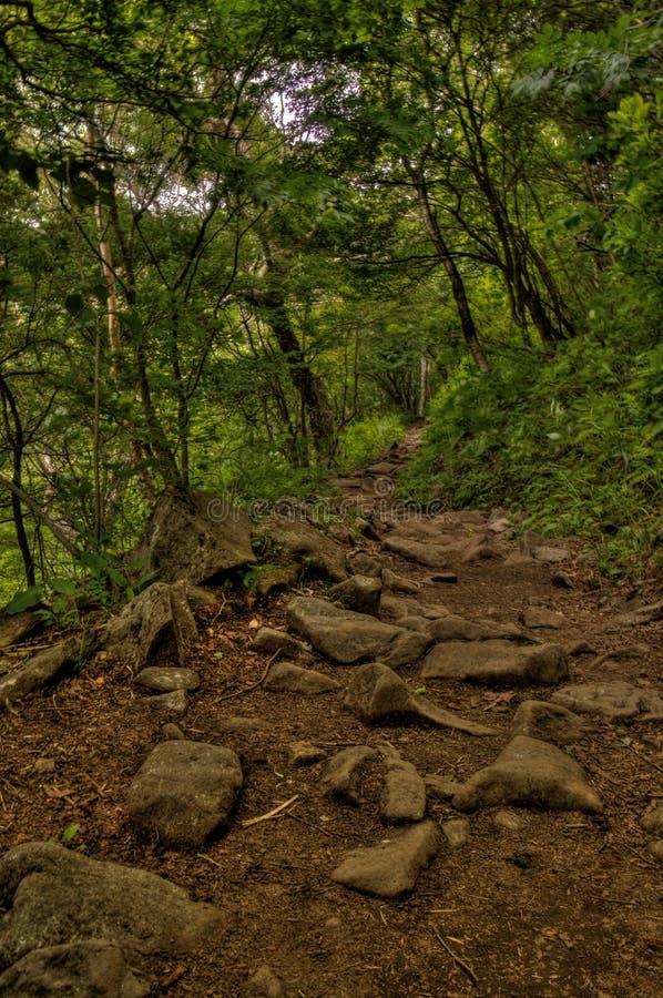 MT Eboshidake maakt deel uit Japanse Alpen in de Prefectuur van Nagano en is 2.066 meters lang stock afbeelding