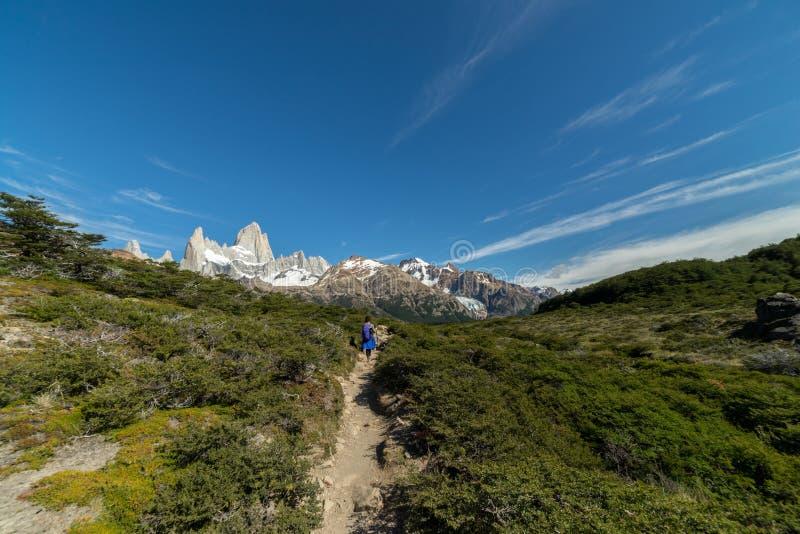 Mt Fitz Roy, montañas rugosas de la Patagonia la Argentina fotos de archivo