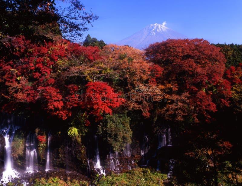Mt, fuji-212 photos stock