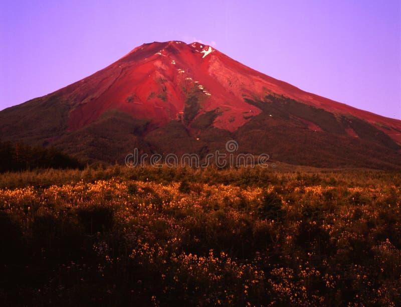 Mt fuji-428 fotos de archivo