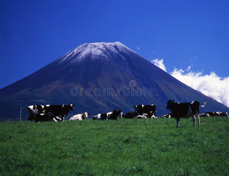Mt fuji-437 stockbild