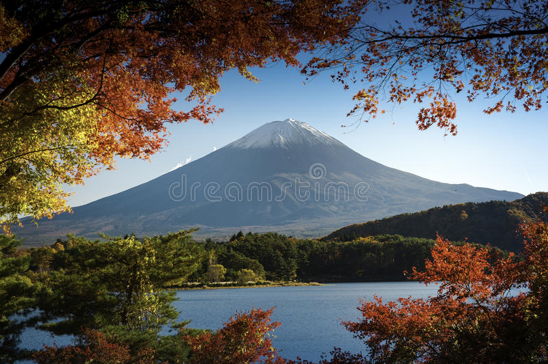 MT Fuji royalty-vrije stock foto's
