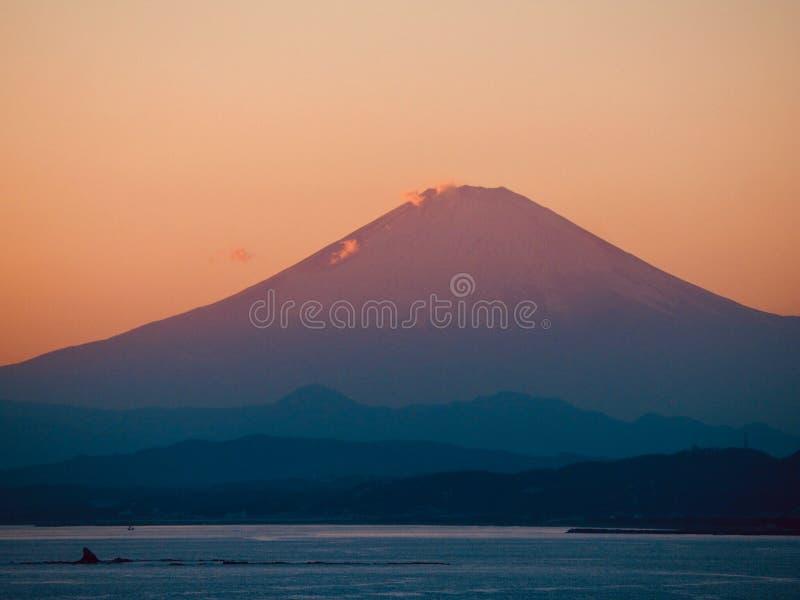 Mt Fuji berömd japansk gränsmärke på solnedgången arkivfoto