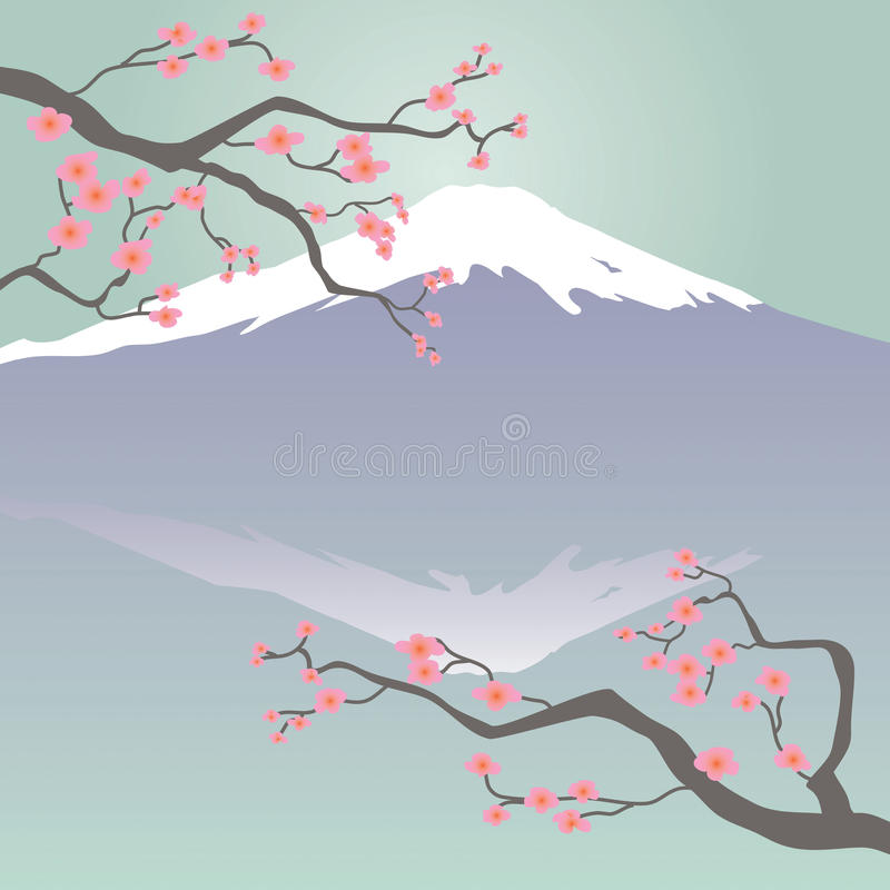 Mt Fuji and Cherry Blossoms. Japanese-style illustration of Mt Fuji and Cherry Blossoms vector illustration