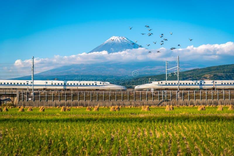 Mt Fuji con il giacimento del treno e del riso di Shinkansen a Shizuoka, Giappone fotografia stock