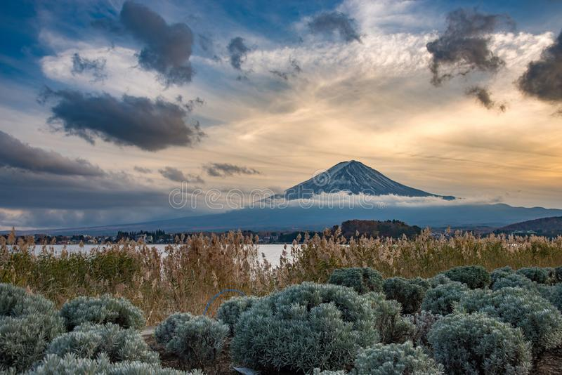MT Fuji in de herfst achter de rode esdoornboom van Meer Kawaguchiko in Yamanashi stock afbeeldingen
