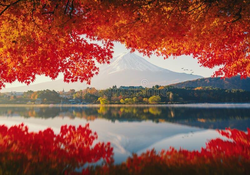MT Fuji in de herfst op zonsopgang royalty-vrije stock afbeelding