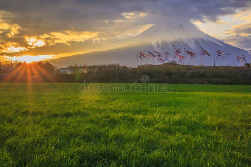 Mt Fuji e flâmula da carpa foto de stock royalty free