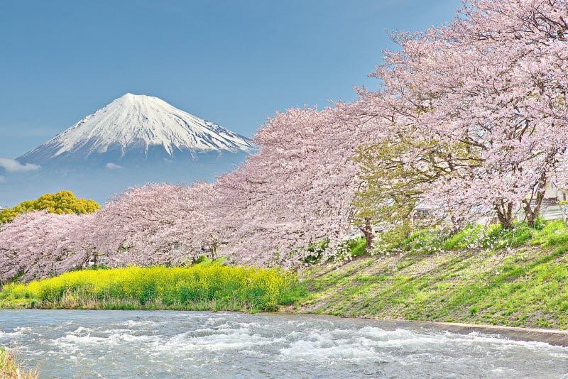 Mt Fuji en el río de Uruigawa fotos de archivo libres de regalías