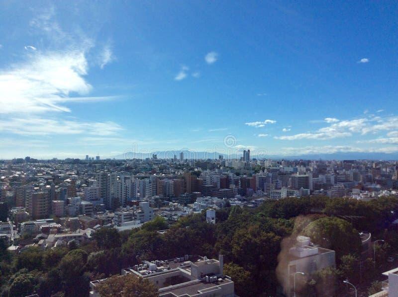 Mt Fuji i avståndet royaltyfri fotografi