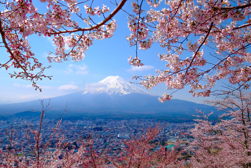 Mt Fuji i Czereśniowy okwitnięcie w Japonia wiosny sezonie (japończyk Cal ilustracji