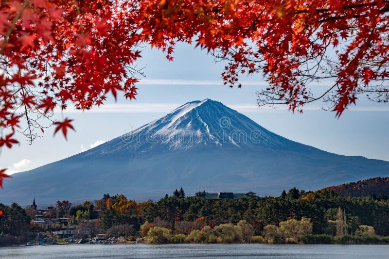Mt Fuji i höst på soluppgång arkivbild