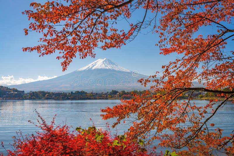 Mt Fuji, Japão em Autumn Season imagem de stock royalty free