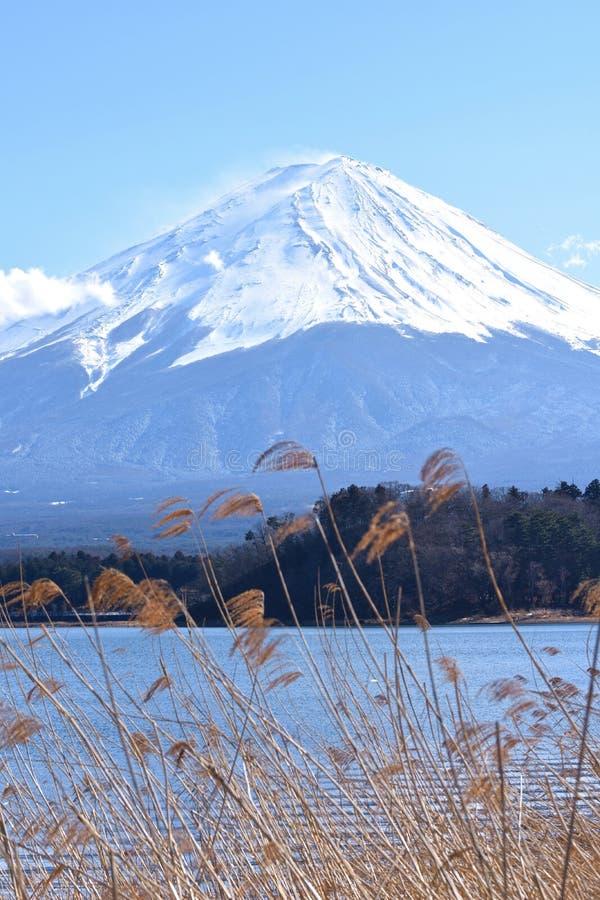 Free Mt Fuji, Japan Stock Photo - 92585570
