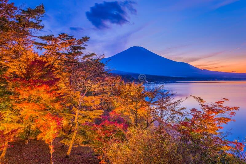 Mt fuji japan mt royaltyfria foton