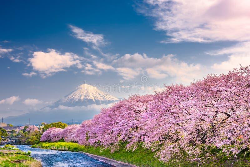Mt Fuji Japan vårlandskap royaltyfria foton